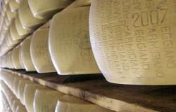 parmesan-588803_640